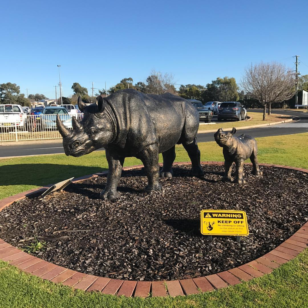The Aberdeen Motel is close to the Dubbo Zoo, where you can see Rhinos and other plains animals.